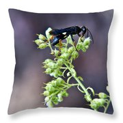Black Flower Feeding Wasp Throw Pillow