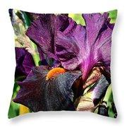 Black Iris Throw Pillow