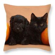 Black Kitten & Puppy With Pumpkins Throw Pillow