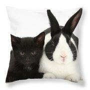 Black Kitten Dutch Rabbit Throw Pillow