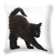 Black Kitten Stretching Throw Pillow
