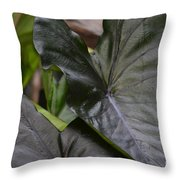 Black Magic Throw Pillow
