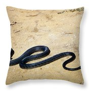 Black Mamba Throw Pillow by Elizabeth Kingsley