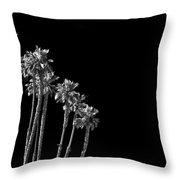 black Palms Throw Pillow