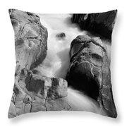 Black River Cascade Detail Throw Pillow