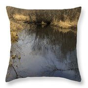 Black River Throw Pillow