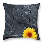 Black Schist Flower Throw Pillow by Carlos Caetano