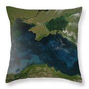Black Sea Phytoplankton Throw Pillow by Nasa