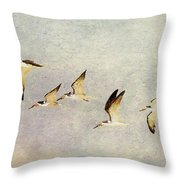Black Skimmers On The Move Throw Pillow