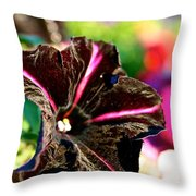 Black Spider Petunia Throw Pillow