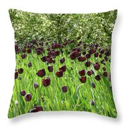Black Tulips Throw Pillow