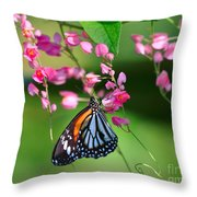 Black Veined Tiger Butterfly Throw Pillow