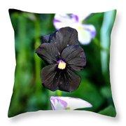 Black Violet Throw Pillow