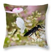 Black Wasp 1 Throw Pillow