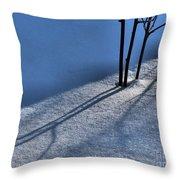 Blackberry Blue Throw Pillow