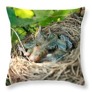 Blackbird Nest Throw Pillow