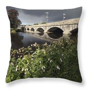 Blackwater River In Munster Region Throw Pillow