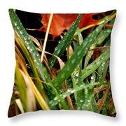Blades Of Dew Throw Pillow