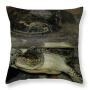 Blandings Swimming Turtle Throw Pillow