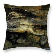 Blandings Turtle Throw Pillow