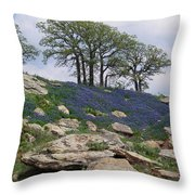 Blanketed In Blue Throw Pillow