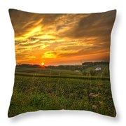 Blazing Countryside Throw Pillow
