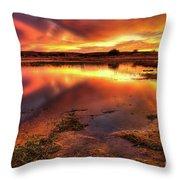 Blazing Sky Throw Pillow by Carlos Caetano