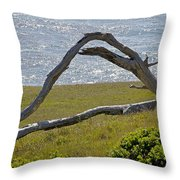 Bleached Wood And Diamond Waves Throw Pillow