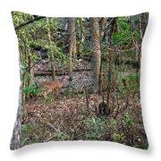 Blending Deer Throw Pillow