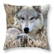 Blending Wolf  Throw Pillow