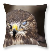 Blind Buzzard Throw Pillow
