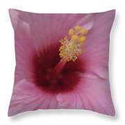 Blissful Repose Of Duality Throw Pillow by Sharon Mau