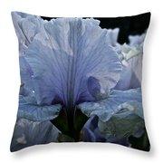 Blooming Iris Throw Pillow