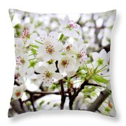 Blooming Ornamental Tree Throw Pillow