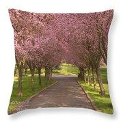 Blooms Along The Lane Throw Pillow