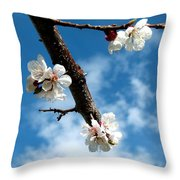 Blossoming Apricot Throw Pillow