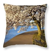 Blossoming Cherry Trees Throw Pillow