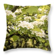 Blossoming Hawthorn Tree Throw Pillow