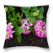 Blossoms And Rain Drops Throw Pillow