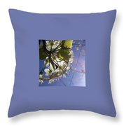 Blossoms In Bloom Throw Pillow by Katie Cupcakes