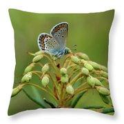 Blue 3 Throw Pillow