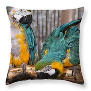 Blue And Gold Macaw Pair Throw Pillow
