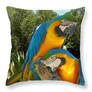 Blue And Gold Macaws Throw Pillow