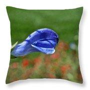 Blue Beacon Throw Pillow