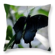 Blue-black Butterfly Throw Pillow