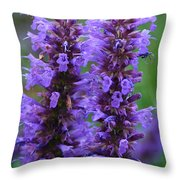Blue Boa Throw Pillow