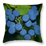 Blue Cohosh Throw Pillow