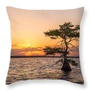 Blue Cypress Lake Sunrise Throw Pillow