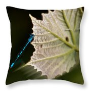 Blue Damsel On Leaf Throw Pillow