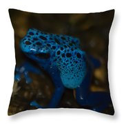 Blue Dart Frog Throw Pillow